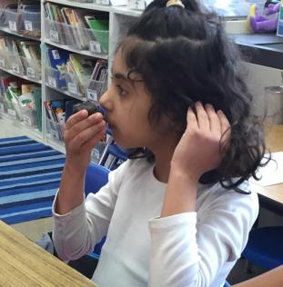 Using our sense of SMELL. They smell like dirt!